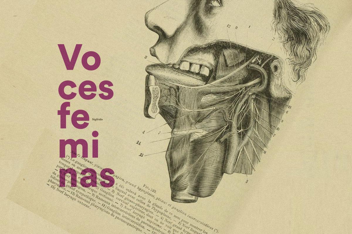 Voces feminas