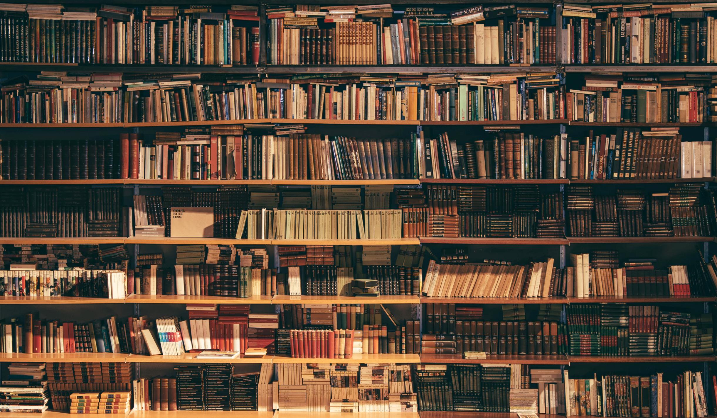 Bibliotecas singulares para visitantes locais atípic@s